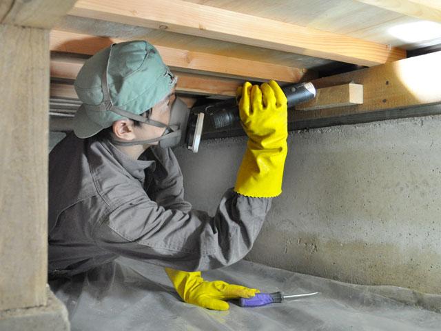 床下・屋根裏の進入調査は必ず実施