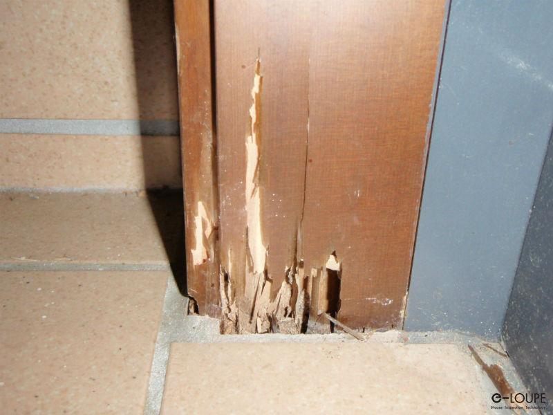 玄関のシロアリ被害