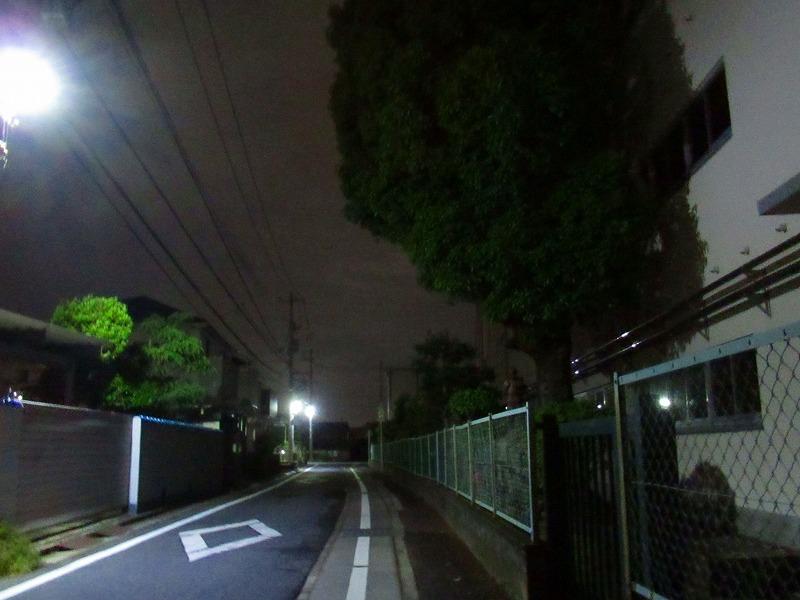 夜道の街灯